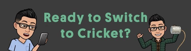 How to Switch to Cricket
