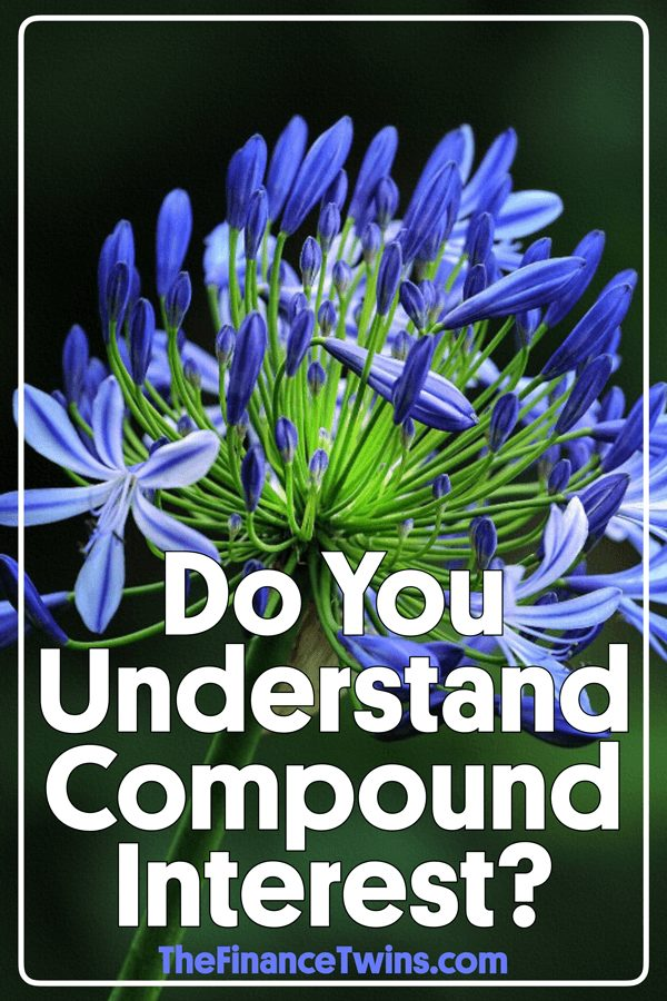 What is compound interest? Compound interest refers to the way money grows when invested. Learn about how to build wealth. #debtfree #debtfreecommunity #budget #finance #financialfreedom #frugal #investing #makemoney #money #moremoney #residualincome #savemoney #savemore #wealth #retirement #earlyretirement #financialindependence #moneygram #frugalliving #financialliteracy #personalfinance #moneymatters #networth #debtfreejourney #studentloans #bosses #creditrepair #dollars #million #gogetit